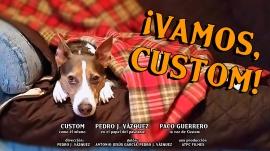¿En qué piensa un perro durante la cuarentena? Custom es un perro doméstico que vive este confinamiento con paciencia y soñando con volver al parque algún día, mientras los humanos viven preocupados por la salud.